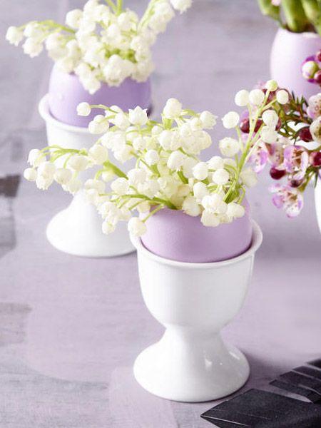 T-Shirts werden weißer, Blumen gesünder und sogar unsere Wohnung schöner. Eierschalen gehören nicht in den Müll, sondern schlau genutzt!