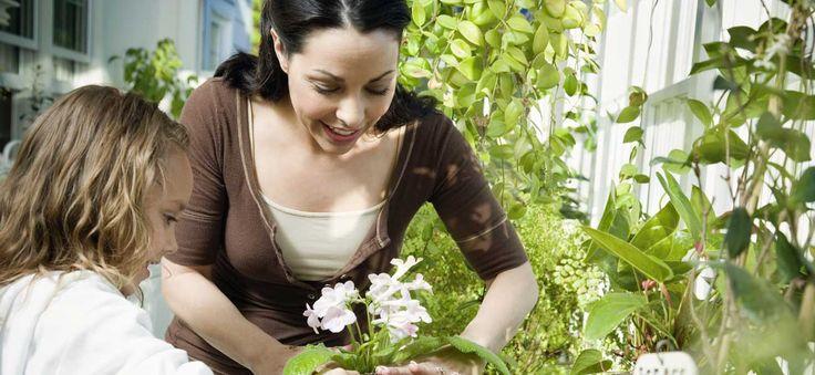 Guide pratique sur le jardinage : savoir semer et planter, qualité de la terre et du sol, désherbage, trouver un jardinier : tout sur Ooreka.fr