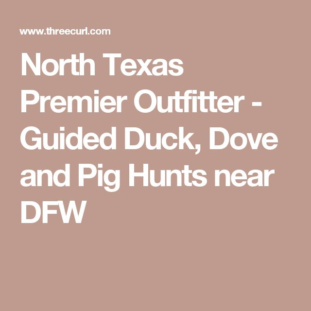 North Texas Premier Outfitter - Guided Duck, Dove and Pig Hunts near DFW