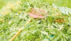 Gérer les déchets verts de votre jardin, fév. 2016
