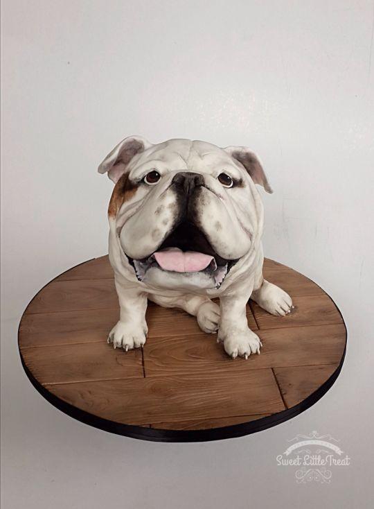 English Bulldog Cake   British Bulldog