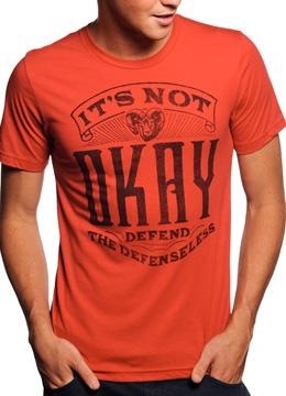 Domestic Violence awareness shirts!