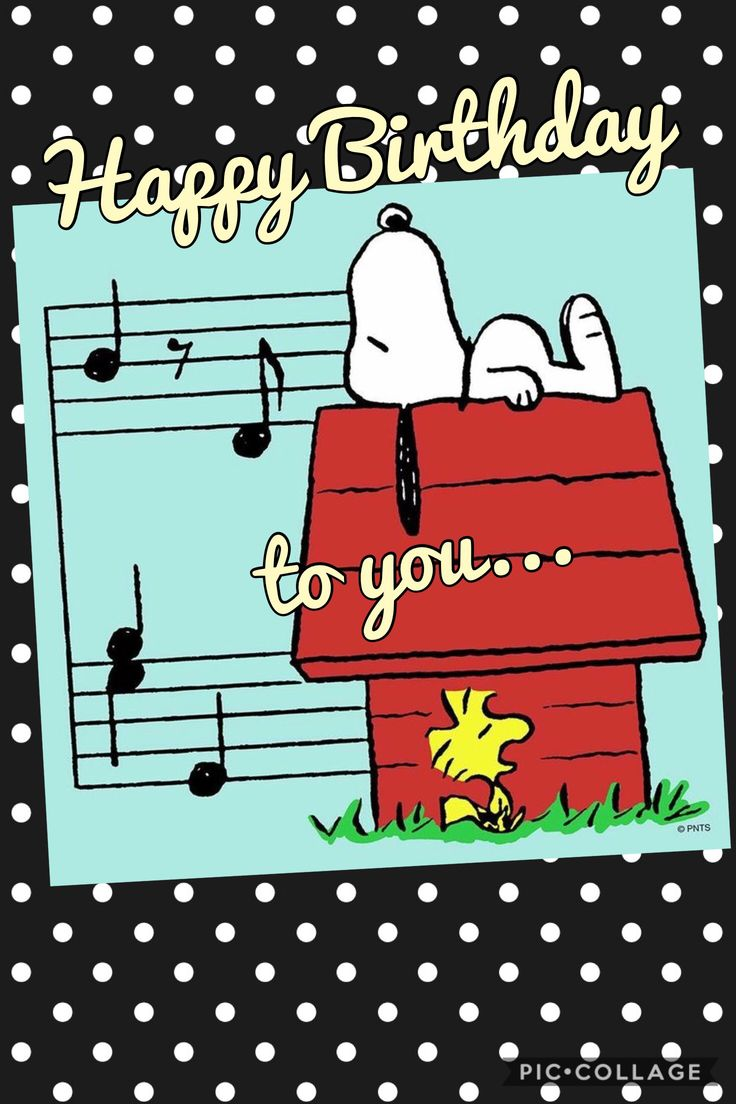178 Best Happy Birthday Announcements Images On Pinterest Happy