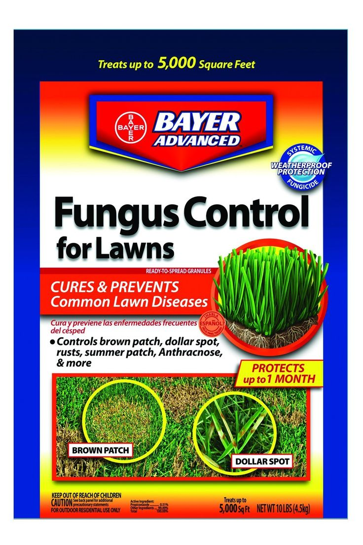 Bayer Advanced Fungus Control for Lawns II Works Systematically Weatherproof Protection - 10 lb - 10 lb