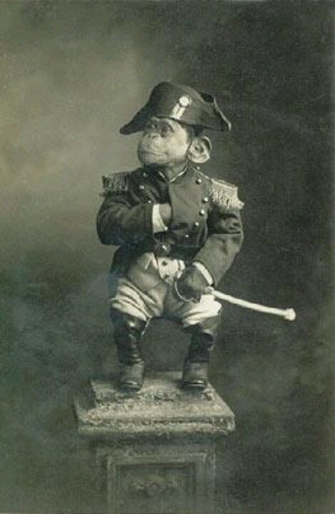Victorian monkey. I don't know why this exists but I'm SO glad that it does!
