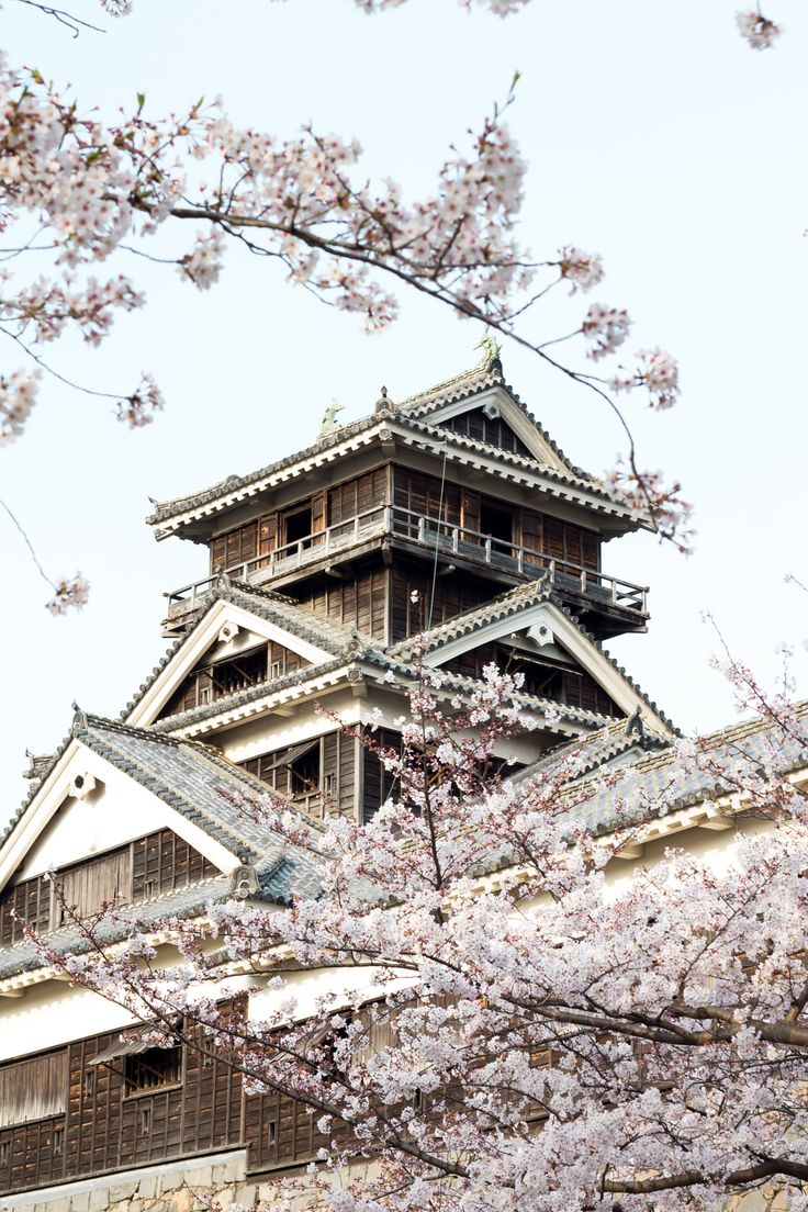 Kumamoto castle in spring by Nattawat Chanthaphan on 500px