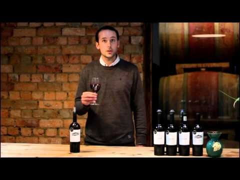 Boucheron Wines spends some time with Mount Sutherland Wines and tastes Mount Sutherland Syrah 2010 ...