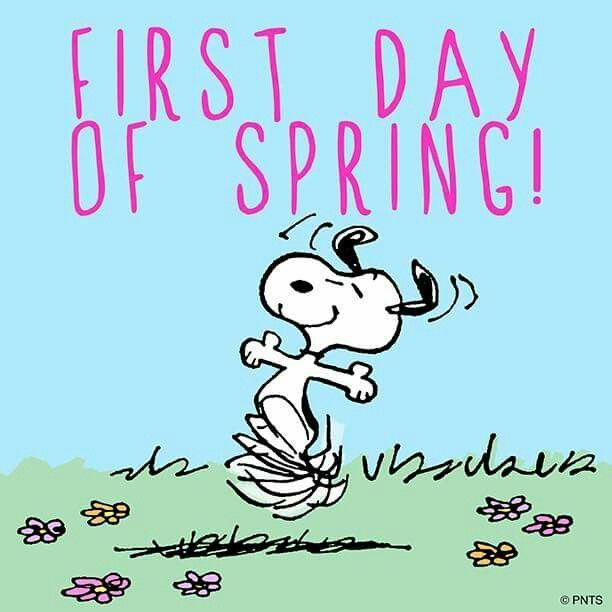 Happy first day of Spring! Goodbye winter (hope you never return)!
