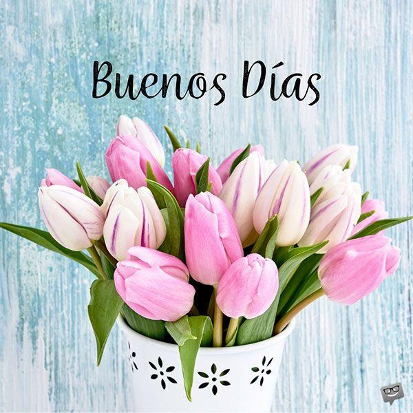 A Very Spanish Good Morning Buenos Dias Good Morning In Spanish Happy Birthday Images Good Morning Images