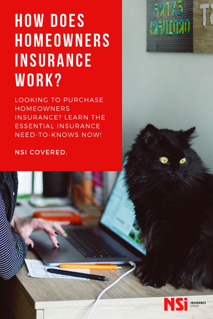 How does homeowners insurance work looking to purchase