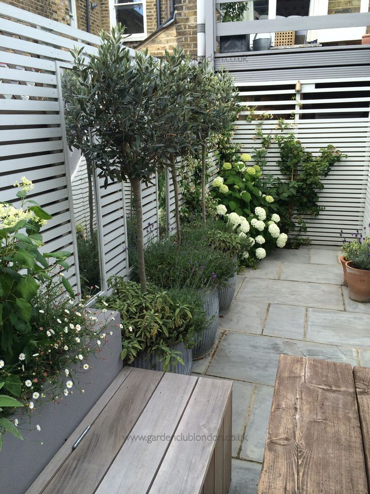 Small rear garden in London | Potted plants in front of mirrors provide an illusion of larger space.