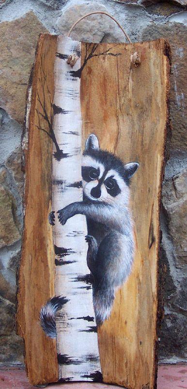 baby_raccoon_on_bark.jpg (386×800)