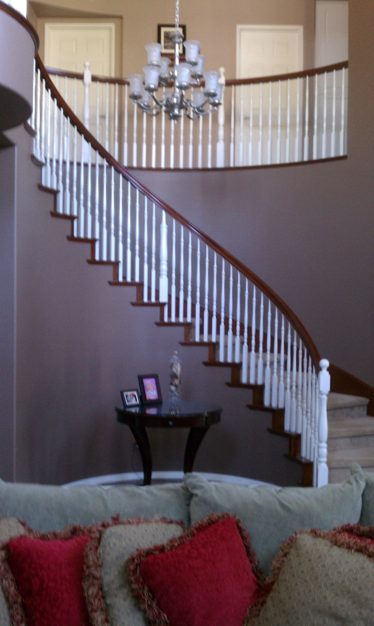 I love the symmetry, color and openness of my spiral staircase that greets me everytime I enter my house.