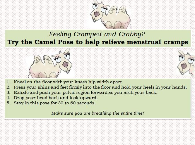 Pin by Below Your Belt on Ovulation and Periods | Pinterest