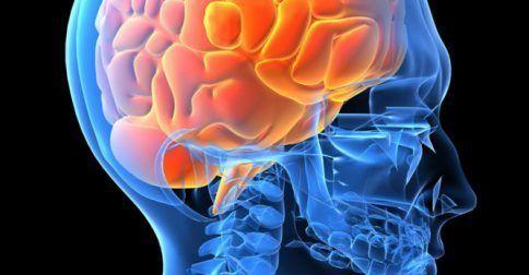 Βελτίωση των νευρολογικών και νοητικών λειτουργιών με φυσικά φλαβονοειδή: http://biologikaorganikaproionta.com/health/231408/