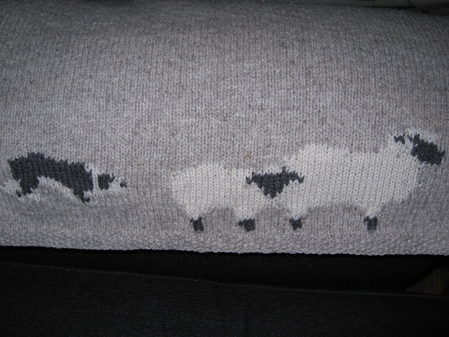 Knitting Pattern For Border Collie : 88 best images about Border Collie on Pinterest Sheep dogs, Pet memorial gi...
