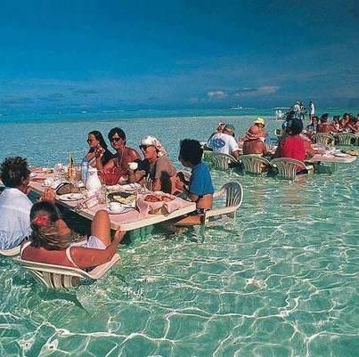 Lunch Break in Hawaii