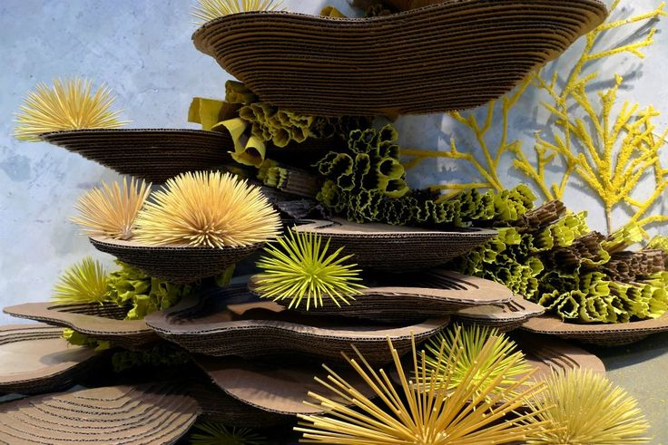 I am in love with Anthropologie's Earth Day window displays. They are an underwater dream.      A fish fantasy of sponges and sea urchins...