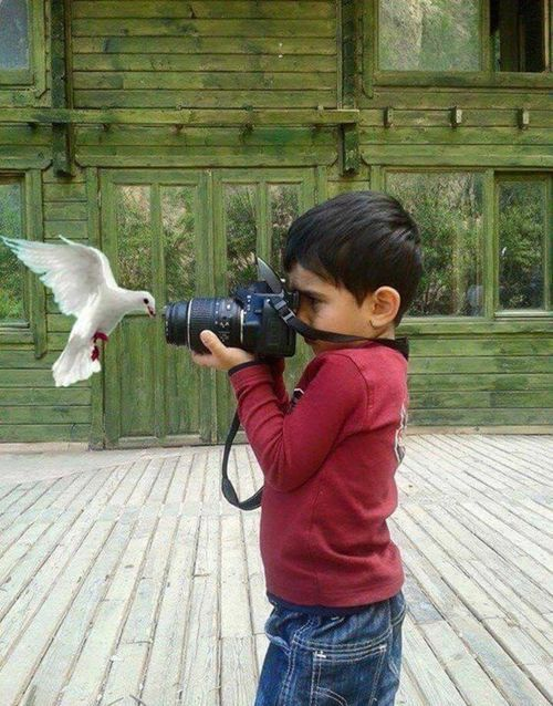 Give your child the expensive pro camera and see what magic is possible. He/she will feel vervy vibrancy and explore new passions!