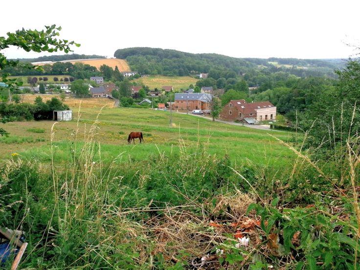 Maison de rangée à vendre à Malonne - 69 000 € Maison à l'état de ruine sur un beau terrain orienté sud, sud-ouest avec une belle vue sur le vallon. Terrain de 7,21 ares idéal pour un nouveau projet immobilier. Possibilité de réduction des...