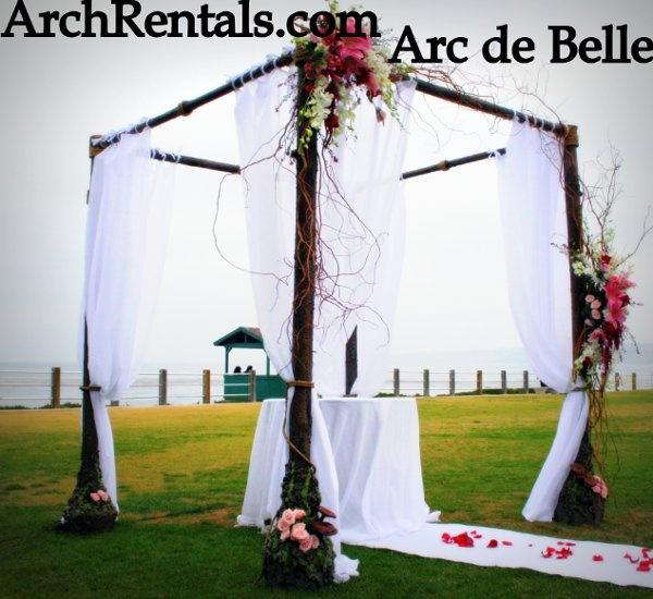 Hawaiian Wedding Altar: Best 25+ Canopy Rentals Ideas On Pinterest