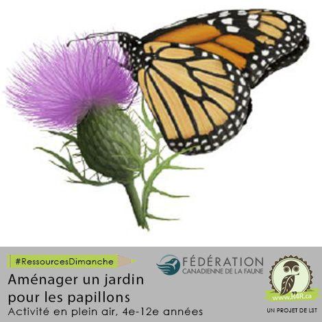 Cette semaine, pour #RessourcesDimanche de #R4R.ca, «Aménager un jardin pour les papillons». La ressource permet aux élèves d'aménager, à l'école, un jardin favorable aux papillons et aux autres pollinisateurs. Les élèves participent à la conception du jardin, y compris le choix de l'emplacement, le plan de l'aménagement, les demandes aux autorités, les efforts de communications avec la communauté scolaire et le plan de travail, la recherche sur les papillons, etc. Regardez l'activité à