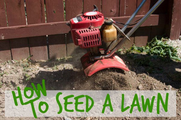 Lawn seeding is not just for patchy or thin grass, but is a great way to choke out crabgrass and other weeds. Reseeding an entire lawn is easiest to finish in the fall when these weeds go into dormancy and the grass seed will have a chance to germinate before it also becomes dormant. A spring seeding is usually just for treating small areas that lack any new grass sprouts.