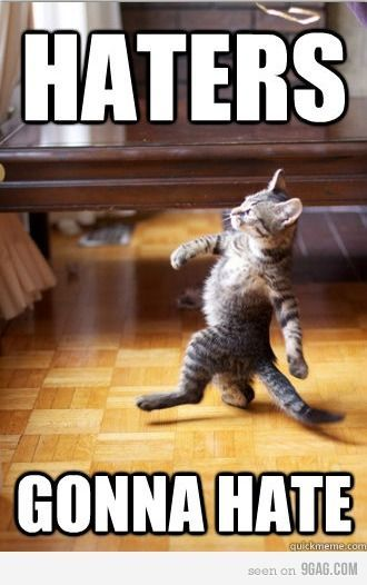 :DGonna Hate, Like A Boss, Walks, Funny Cat, Haters Gonna, Funny Stuff, Funny Animal, Kitty, Likeaboss