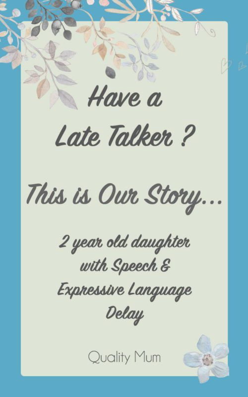 2 year old Speech & Expressive Language Delay Story - Late Talker