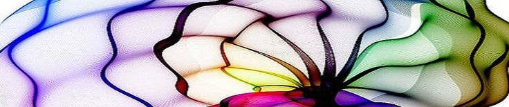 Asoman por el horizonte de cada cita las caras amigas con brazos abiertos y el corazón en cada sonrisa. ¡Sí! ¡Cuántos pasos hemos dado en la circunferencia del reloj para finalmente encontrarnos de nuevo en el presente de la vivencia compartida, con la mirada renovada!... http://www.angelacastillo.com/