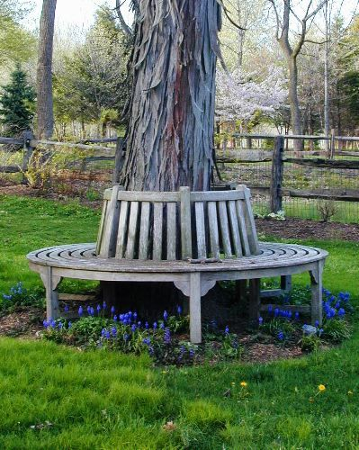 1000 images about garden benches around tree on. Black Bedroom Furniture Sets. Home Design Ideas