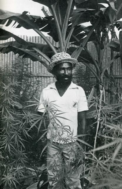 Lee Perry - Backyard Photo?