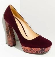the red shoe ursula dubosarsky pdf