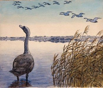Johannes Larsen, danish artist (1867-1961) illustrated The ugly Duckling, fairytale by Hans Christian Andersen in the most beautiful way: a new book with all 35 watercolours -  I So want this edition!