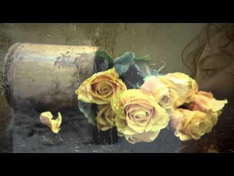 16 růží - Jakub Smolík