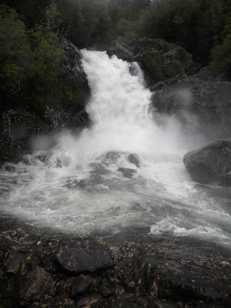 Parque Nacional Alerce Andino, Chile