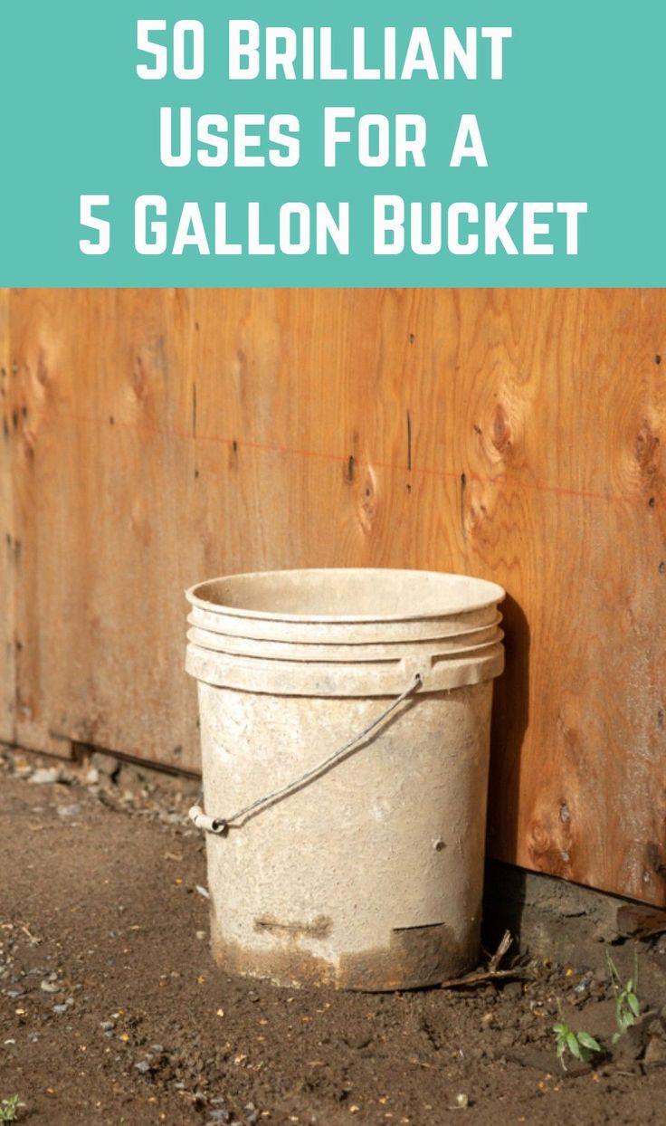 50 brilliant uses for a 5 gallon bucket chickens