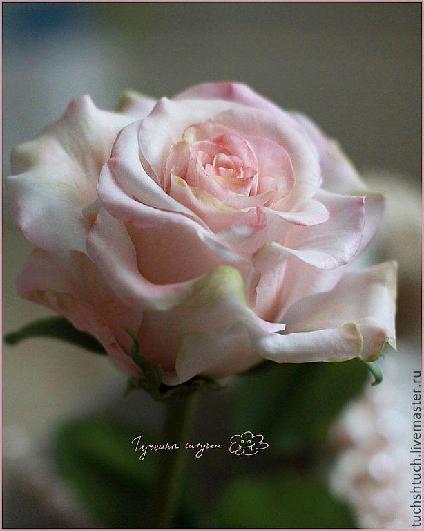 Роза в натуральную величину - Тучкины Штучки (Дарья Минеева) - Ярмарка Мастеров http://www.livemaster.ru/item/5382813-tsvety-floristika-roza-v-naturalnuyu