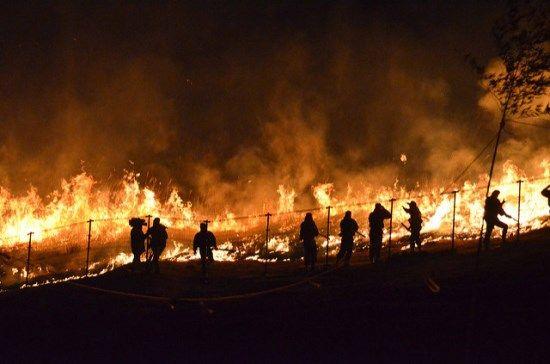 Wakakusa Yamanaki: Festival bakar gunung di Nara yang terkenal
