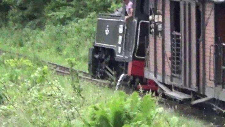TRAIN ROMANIA MOCANITA ONLY IN THE WORLD