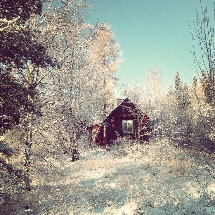 My grandmother was born in this cottage. Boxing Day in Finland.