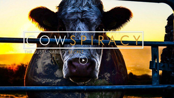 cowspiracy stream german