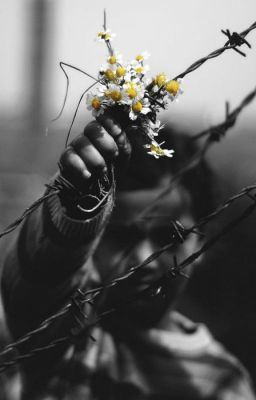 boy with flowers behind barbed wire
