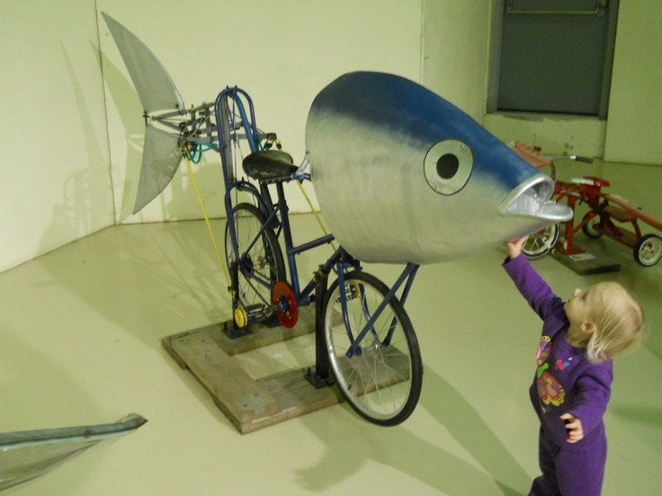 1000 images about decorated bikes on pinterest tricycle for Flying fish bikes