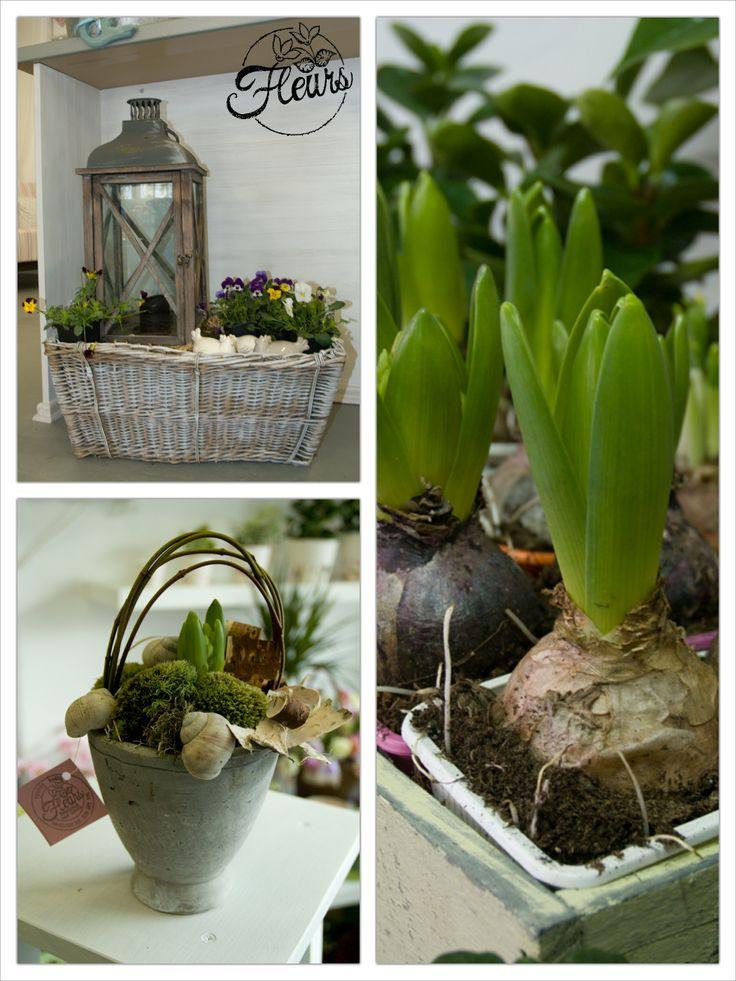 Jarní dekorace / Květiny Fleurs #spring #decoration #inspiration
