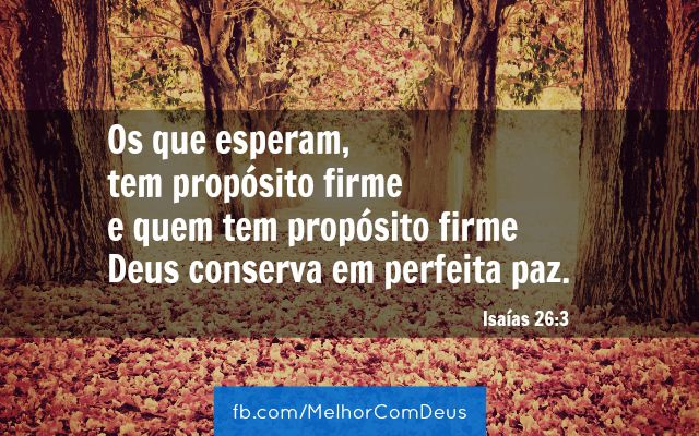 """""""Os que esperam no Senhor, tem propósito firme e quem tem propósito firme Deus conserva em perfeita paz."""" Isaías 26:3"""
