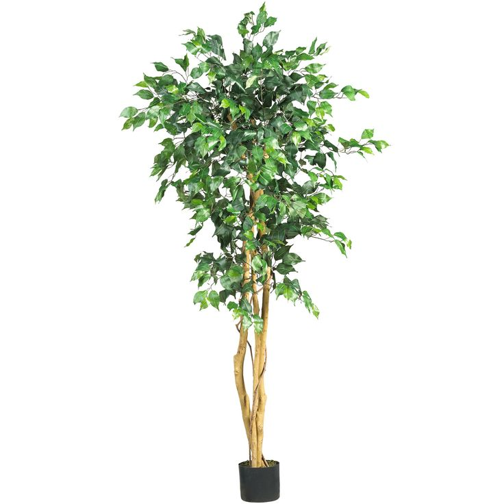 5 foot petite silk artificial ficus tree with natural trunks