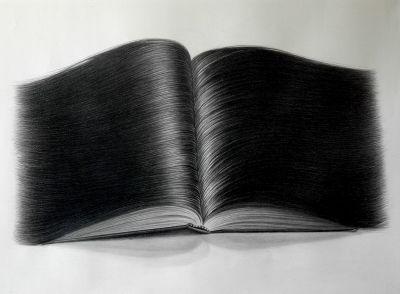 « Cheveu : Poil du haut...» Les Nuls voir les autres dessins velus de Hong Chun Zhang : http://www.hongchunzhang.com/index.php?screen=series&series=03_Hairy+Objects+Drawings