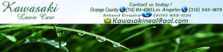 Learn the important basics of gardening in Orange County before hiring a tree trimming service provider. Kawasaki Lawn care services are the best when it comes to getting your garden look beautiful.