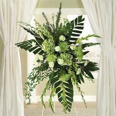 Green Dendrobium Orchids, Hydrangea & Fuji Mums Standing Spray by Americas Funeral Florist